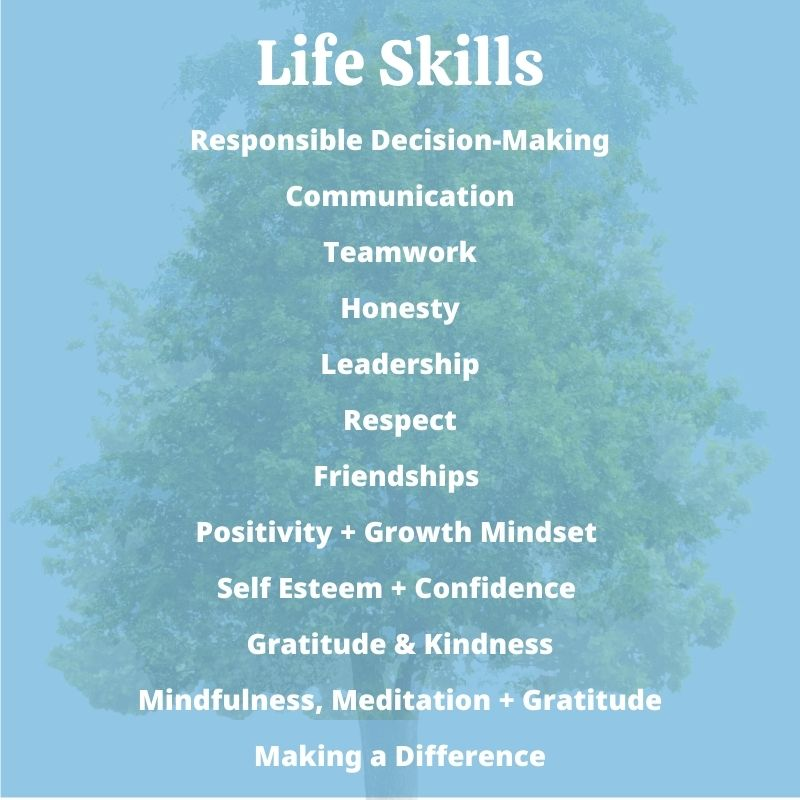 Children's Books with Life Skills Themes